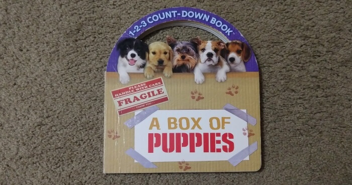 1-2-3 Count-Down Book: A Box of Puppies